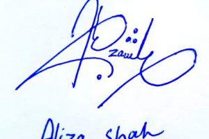 Aliza Shah Signature Styles