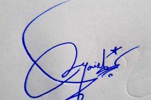 Danial Signature Styles