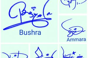 Professional Signature Style