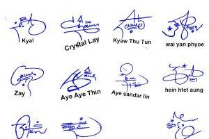 Online Handwritten Signature
